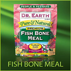 Fish Bone Meal