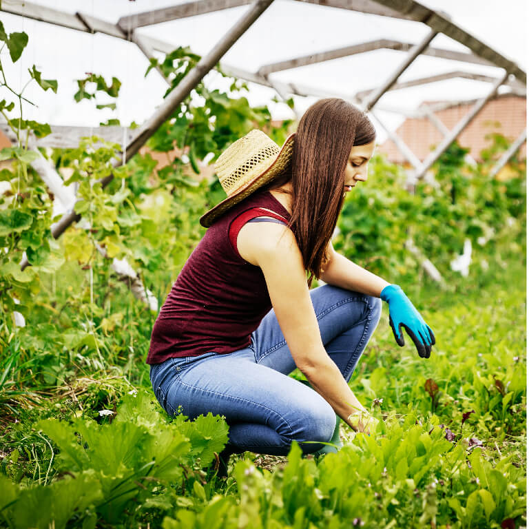 Dr Earth woman in garden