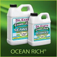 Ocean Rich